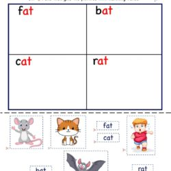 Cut and paste activity worksheet - Kindergarten at word family